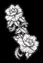 flores-17.png