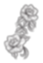 flores-17_edited.png