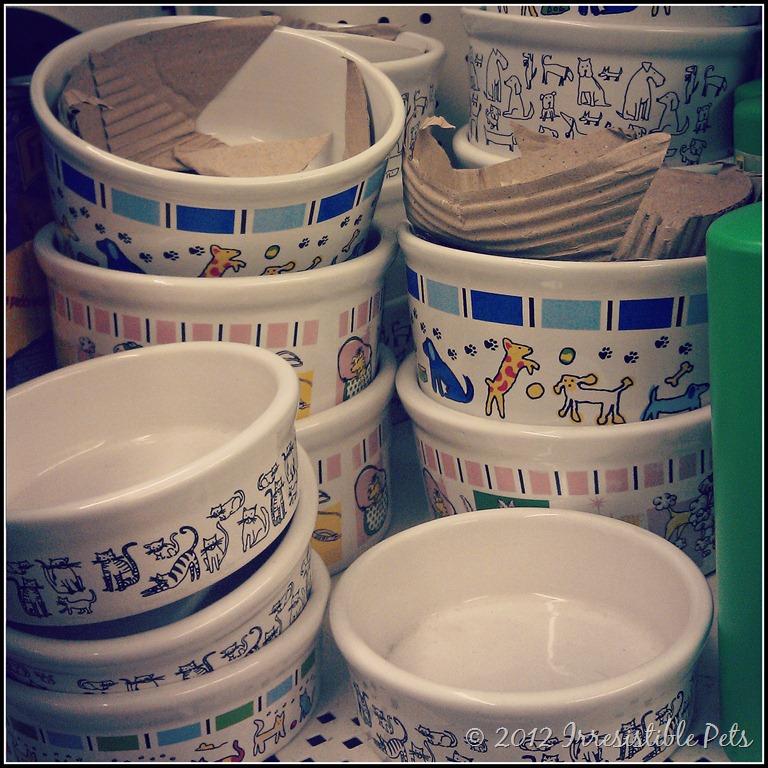 ceramic pet bowl
