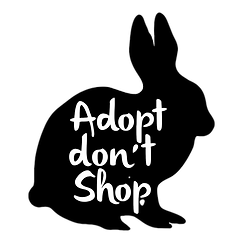 Rabbit Adopt dont shop_edited.png