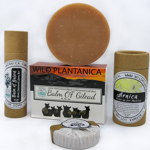 Montana Plants and beeswax Arnica Muscle  Yellowdock Shampoo BlackCottonwood