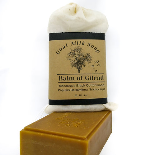 Balm of Gilead Soap Cottonwood Goat Milk 4oz Bar Unscented Cocoa Butter
