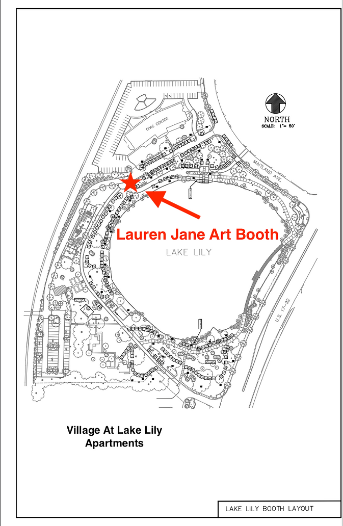 Lake Lily Map Zoomed out.png