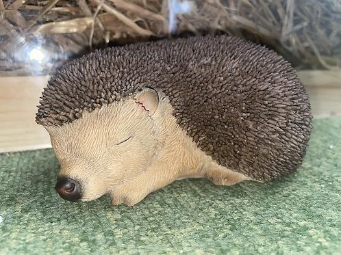 Vivid Arts Sleeping Baby Hedgehog