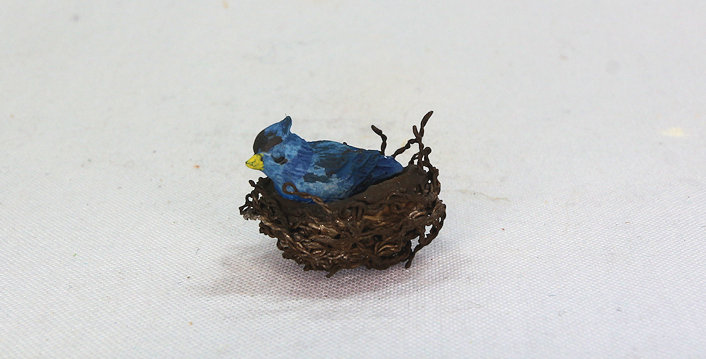 Blue Jay in Nest