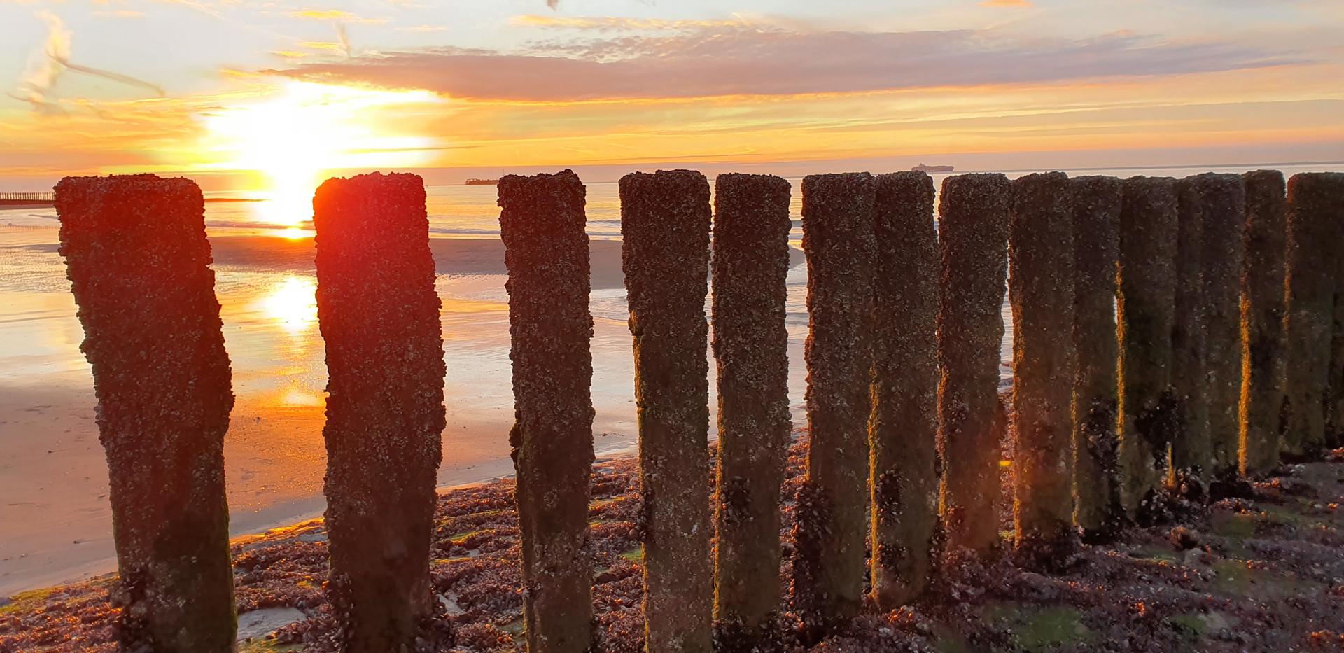 Strand Cadzand Bonnies Ferienwohnung