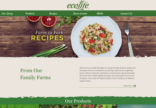Ecolife Web Banner Ad.png