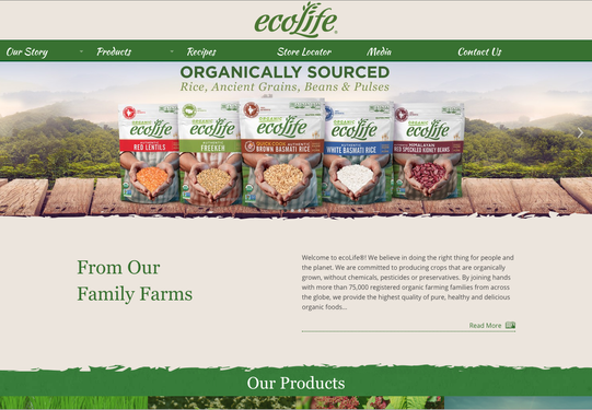 Ecolife Web Banner Ad 02.png
