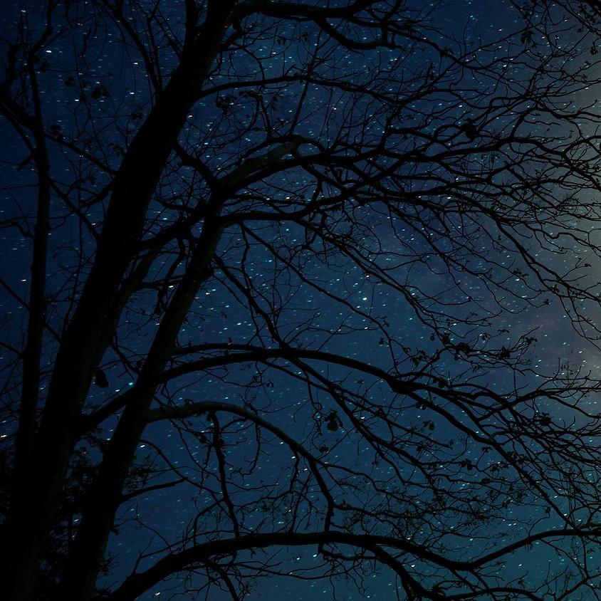 Full Moon Meditation & Sharing Circle