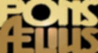 Pons Logo Outline2.png