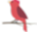 red-bird-1.png