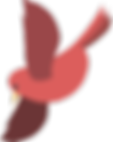 red-bird-2.png