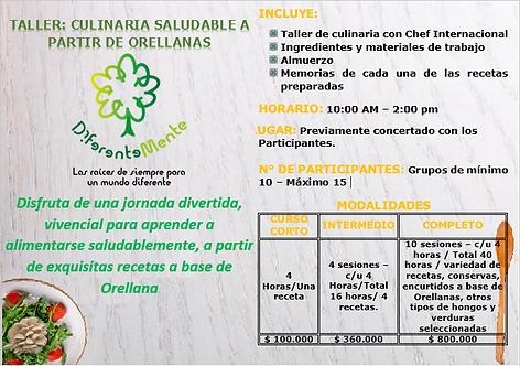 Taller: Culinaria saludable a partir de Orellanas