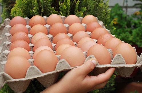 Huevos X 30
