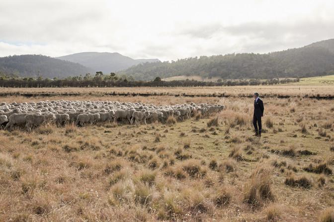 MJBale_Tasmania_3_04_555.jpg