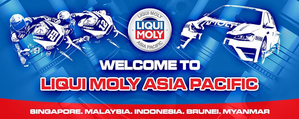 LMAP Welcome banner.jpg