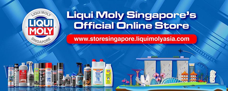 Singapore ecommerce banner.jpg