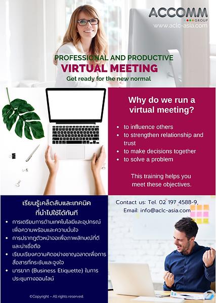 Public Workshop Virtual Meeting 2.png