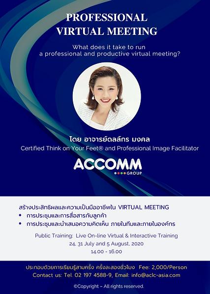 Public Workshop Virtual Meeting 1.png