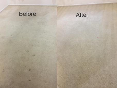 Can Sydney Advanced Cleaning save you money and time?