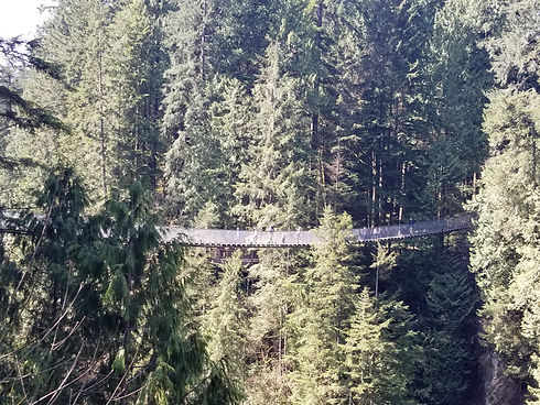 Bridge 2 April 27 2021 .jpg