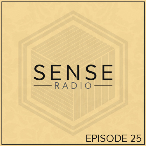 25. Sense Radio Show 11.01.16 Guest Mix For The Love Of House Dj's