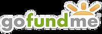 Gofundme Promotion