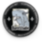 logo DaveStudio