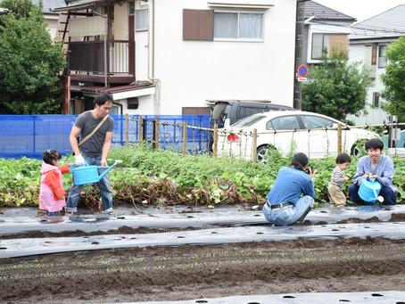 江戸東京野菜コース 第1回