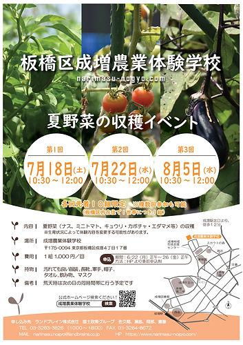 夏野菜収穫イベント チラシ_修正版.jpg
