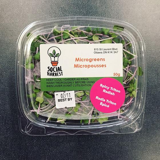packaged greends.jpg