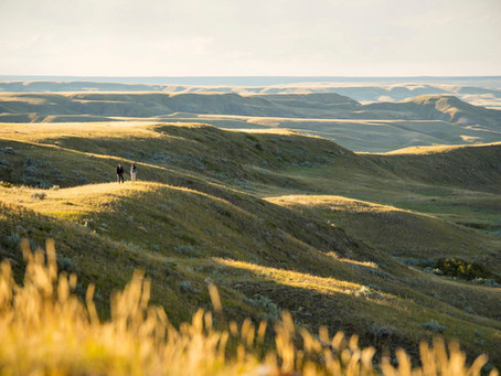 Saskatchewans Meisterwerke der Natur