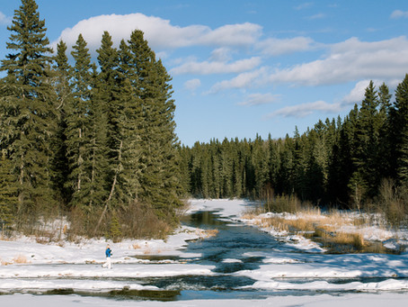 Magische Orte in Weiß: Winterwandern in Saskatchewan