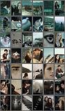 Screen Shot 2020-10-27 at 4.38.38 PM.png