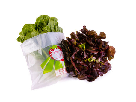 Compostable bags solution ends search for organic produce growers