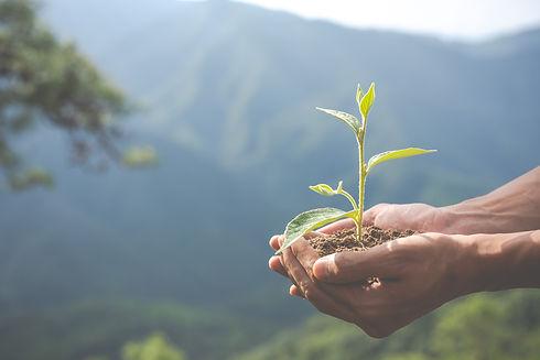 environmental-conservation-garden-childr