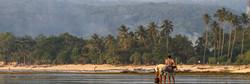 Krui Sumatra Surf