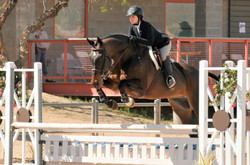 Lexi & Dante in the Eq
