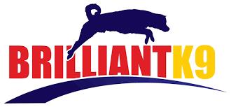 Brillant-K9-Logo.png