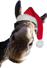 dominick the donkey song - Dominick The Italian Christmas Donkey Song