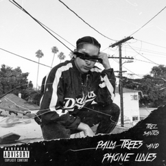 Palm Trees and Phone Lines (EP)