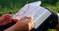 bible read plan.jpeg