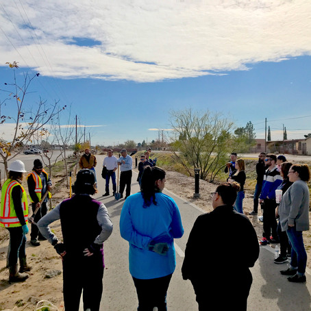 West Texas Urban Forestry Council's Tree Planting Day at the Playa Drain Trail