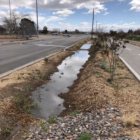 TWDB Presents Playa Drain Trail With 2020 Texas Rain Catcher Honorable Mention