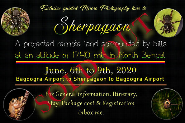 Sherpagaon workshop sold out.jpg
