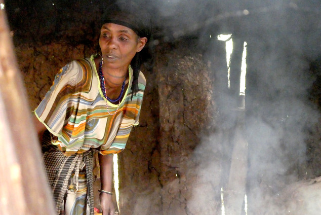 Ethiopian farmer woman.JPG