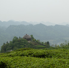 The big tea pot in the mountains..JPG