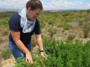 Nina Joubert, Toekomst Farm.JPG