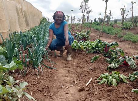 """Organic delivers!""…health in a holistic sense"