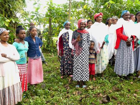 #Bio und #Klimaschutz in Äthiopien